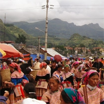 Hill Tribe Market Tours